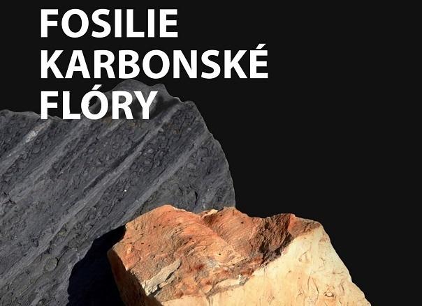 Výstava fosilií karbonské flóry v Hornickém muzeu Zbůch